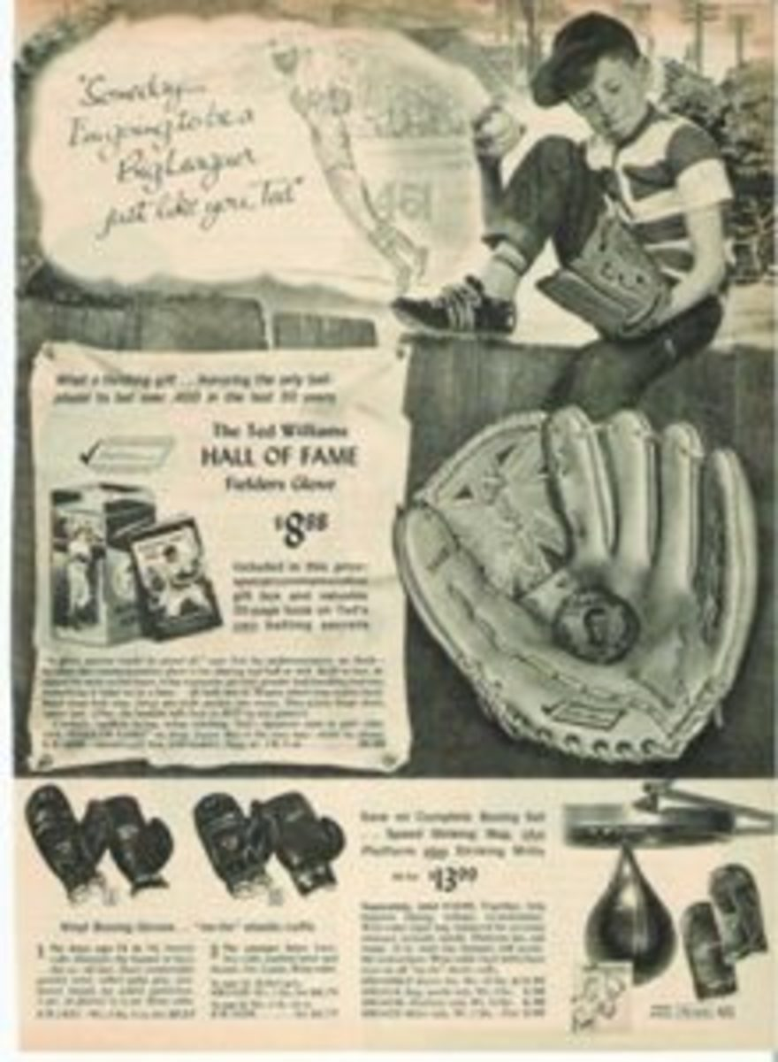 Page 421 of the 1966 Sears Christmas Catalog included a Ted Williams glove and book.